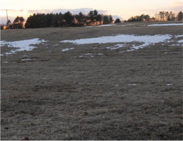 Amherst Landfil